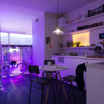 appartamento 2050-Londra