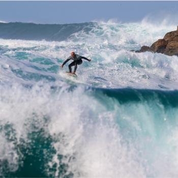 surfista e alghe