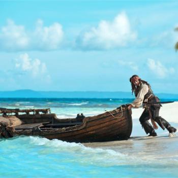 alghe e pirati dei Caraibi