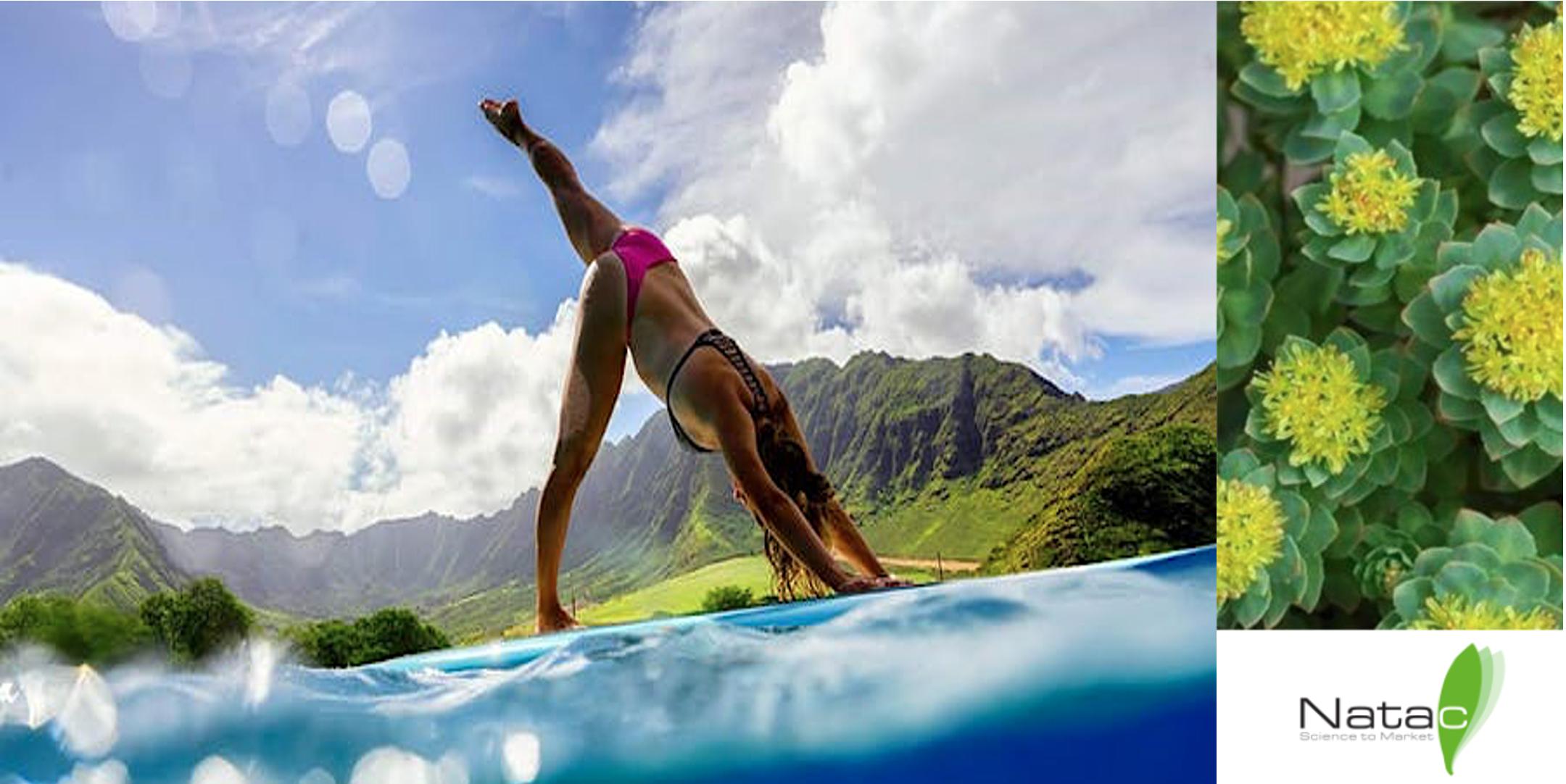 sup yoga e rhodiola
